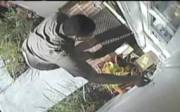 UPS worker stealing iPad mini
